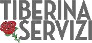 logo Valtiberina Servizi
