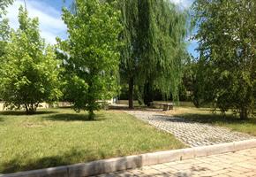 Manutenzione giardini pubblici